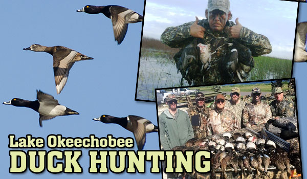 hunt-duck-slide